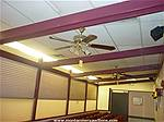 Picture: Ceiling Fans