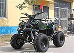 Picture: (New)110cc ATV