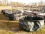 Picture: 5-Tire Feeders