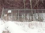 Picture: Chain Link Fence