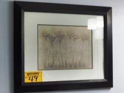 Picture ID 36820 for Sale ID 409