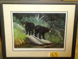 Picture ID 50540 for Sale ID 470